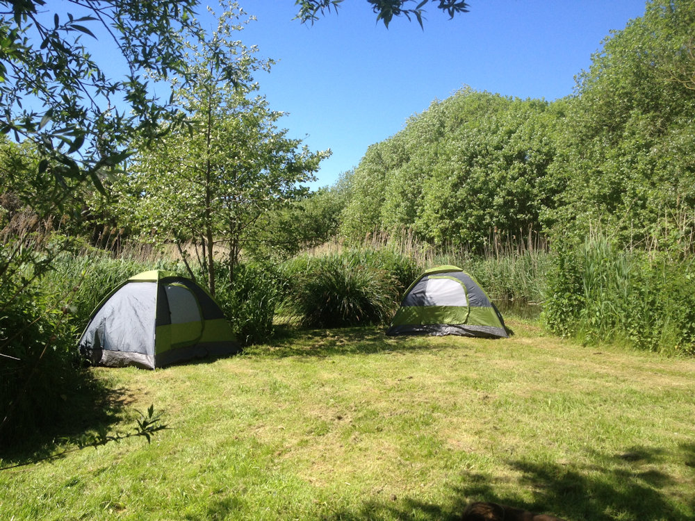 Moco - wild camping on Alderfen Marshes