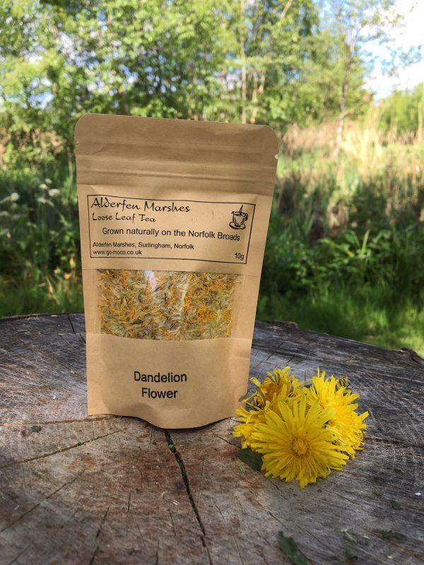 Wild Dandelion Flower Tea