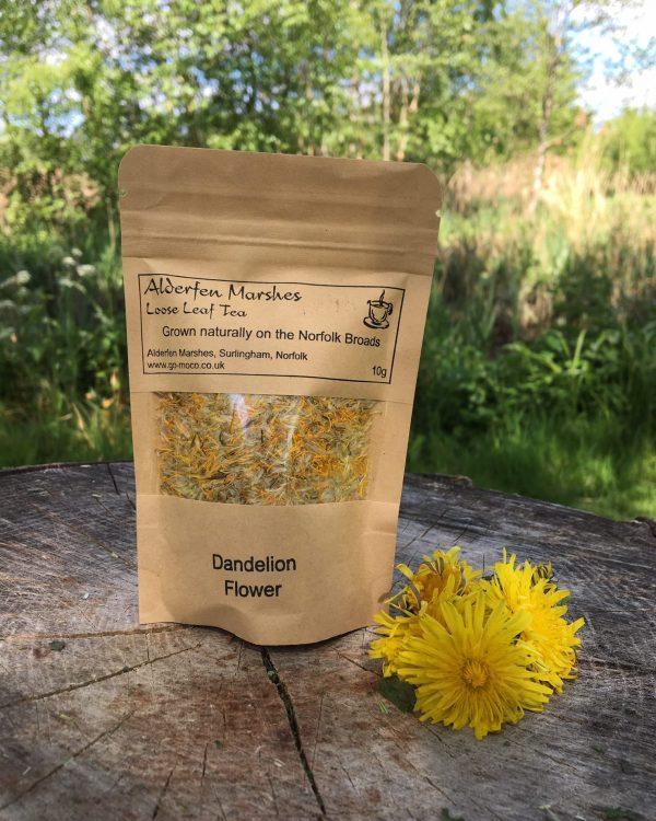 Wild Dandelion Flower Tea