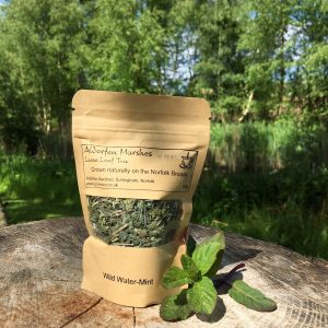 Wild Water-Mint Tea: 10g Loose Leaf